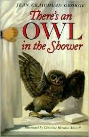 Owl Shower George