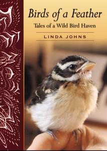 Birds of a Feather Linda Johns