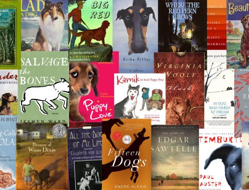 "With ""The Year of the Dog"" in Mind: Dog Stories"