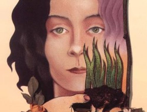 Seeds: Rereading Carol Shields (The Box Garden)