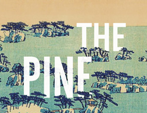 Marion Poschmann's The Pine Islands (2017; Trans. Jen Calleja 2020)