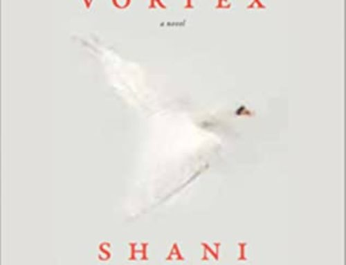 Unresolved: Shani Mootoo's Polar Vortex (2020)